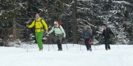 Skifahren mit einer Knieprothese